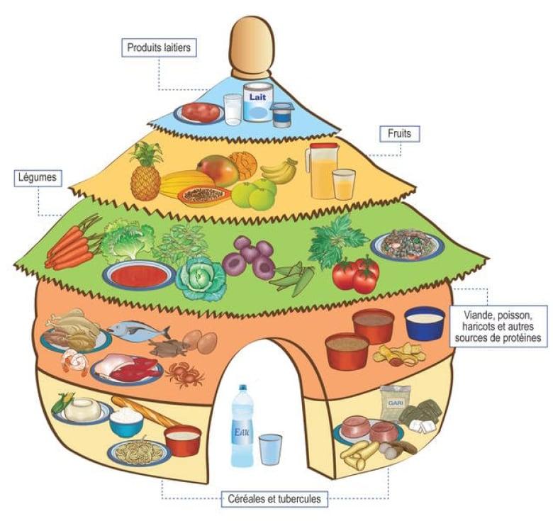 Benin Regional Health Institute Un Food And Agriculture