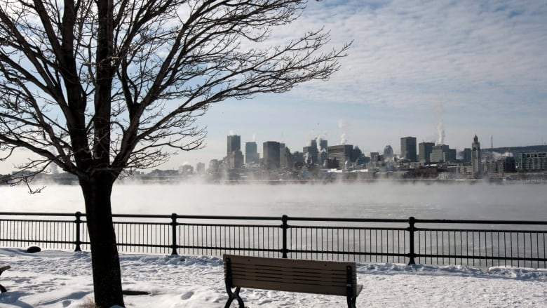 Montreal Overtakes Toronto and Vancouver In Real Estate Price Growth