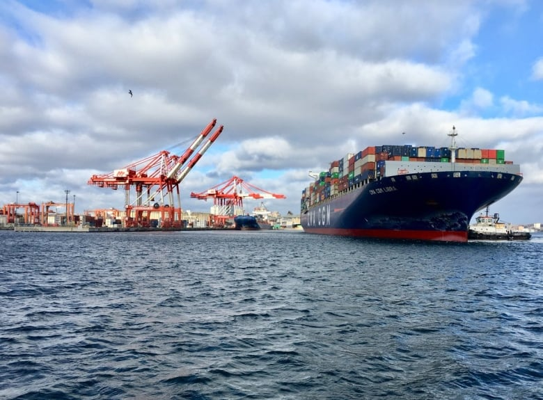 'You're going to notice this one': Container ship in Halifax is biggest yet for port