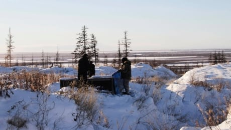 World's permafrost warming, with Siberia rising the most: study