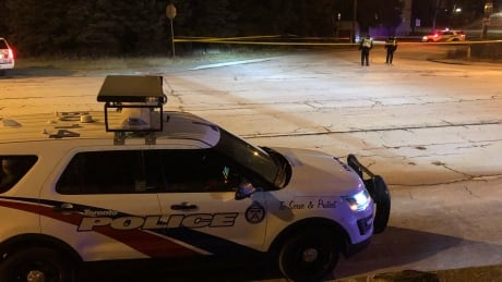 Pedestrian in critical condition after hit and run on Danforth Road