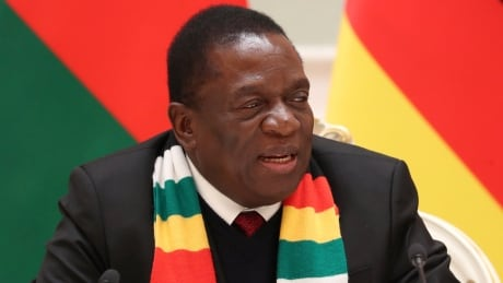 Zimbabwe's leader says violence by security forces 'unacceptable'