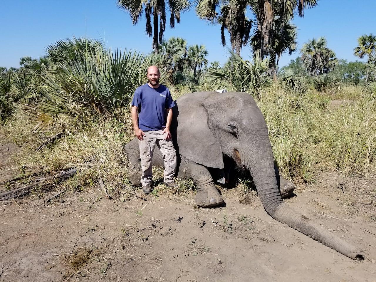The African Elephant (Natures Deadliest)