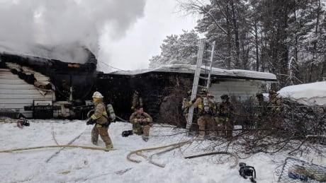fire woodroffe avenue dogs killed ottawa