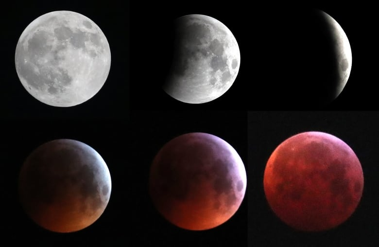 heads up  ... star showers are coming...  Lunar-eclipse-belgium