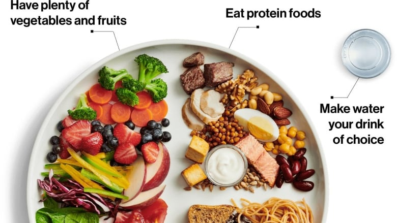 Food guide highlights plant-based proteins as an alternative to meat