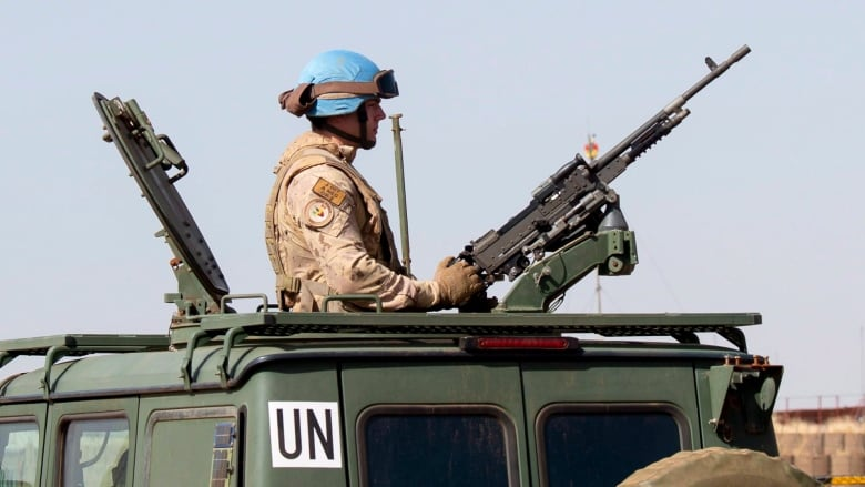 Two UN Peacekeepers Killed in Mali
