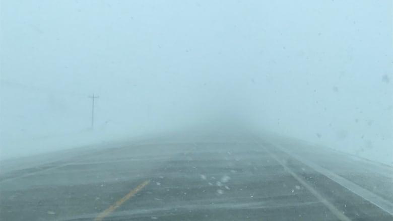https://i.cbc.ca/1.4995128.1548634542!/fileImage/httpImage/image.jpeg_gen/derivatives/16x9_780/blowing-snow-on-highway-3-near-morden-man-on-sunday-afternoon.jpeg