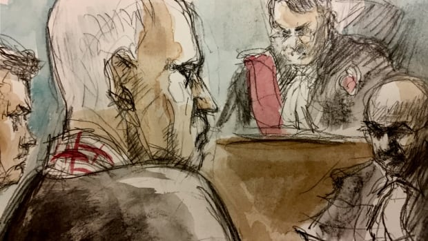 Serial killer Bruce McArthur will have a chance of parole in 25 years, when he's 91, judge rules | CBC News