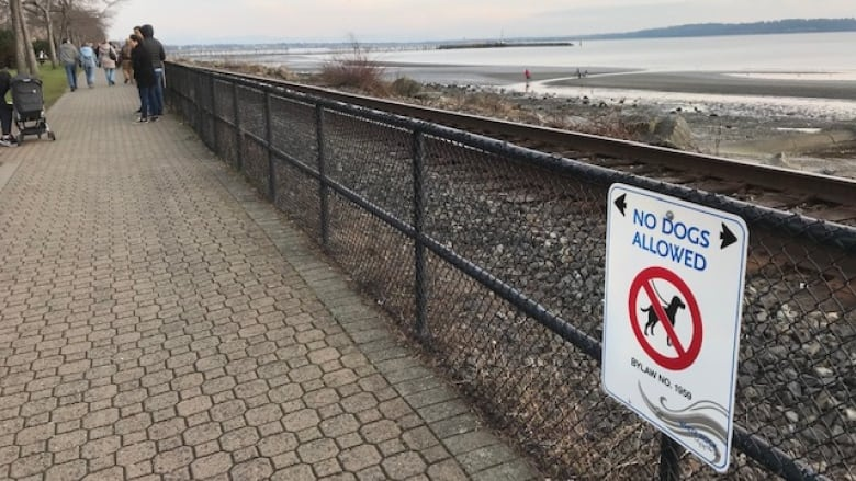 Barking mad: After months of controversy, dogs can now go on White Rock's promenade