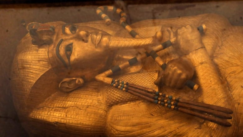 The Curse Of King Tuts Tomb Torrent: The Sarcophagus Of Boy Pharaoh King Tutankhamun Is On