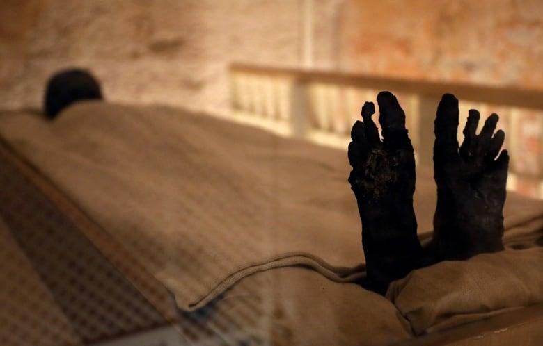 King Tut tomb unveiled after restoration egypt archaeology tutankhamun