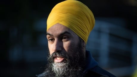 NDP asks elections watchdog to investigate 'slanderous' ads targeting Singh