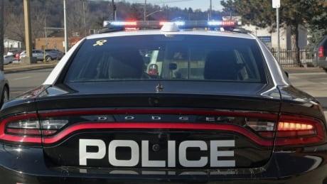 Several injured in altercation between attendees, demonstrators at Hamilton Pride festival