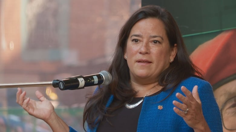 New veterans affairs minister makes first stop in Charlottetown Wilson-raybould