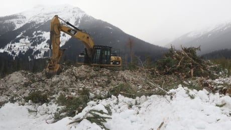 An excavator at a Coastal GasLink worksite in northern B.C.
