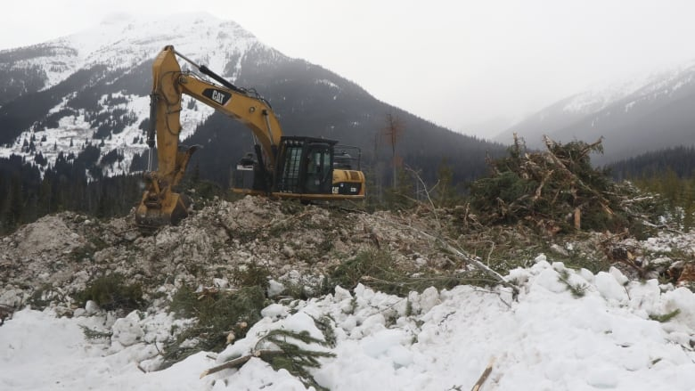Pipeline construction began without archaeological assessments