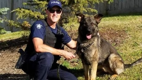 Hammer, the rcmp dog nabs suspects