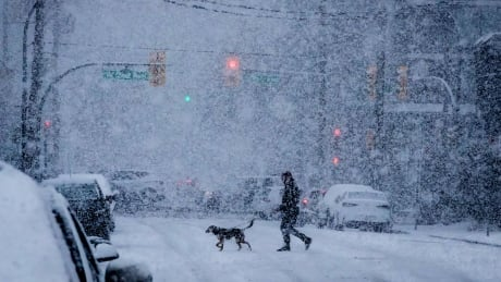 More snow on the way for Southern B.C. Tuesday morning