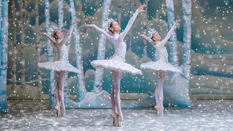 National Ballet of Canada cancels remainder of 2020-21 season, including Swan Lake thumbnail