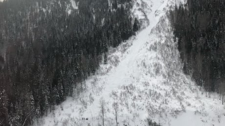 2 skiers caught in avalanche, snowmobiler spends night outdoors near Fernie, B.C.