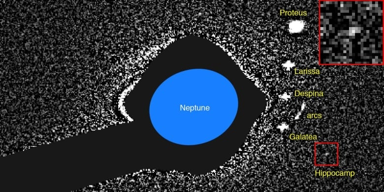 Meet Neptune's New Moon, Hippocamp