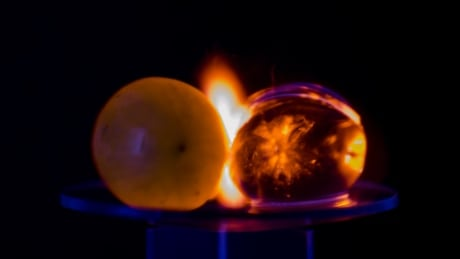 Why microwaving grapes creates a dazzling plasma light show
