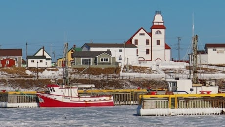 Blue skies, cold air: Take a break with photos from across Newfoundland and Labrador