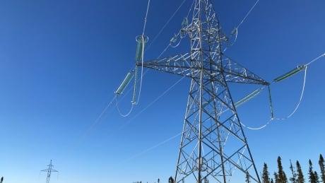 Transmission line-Muskrat