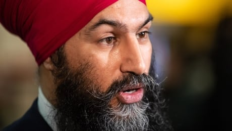 Byelection Singh 20190224