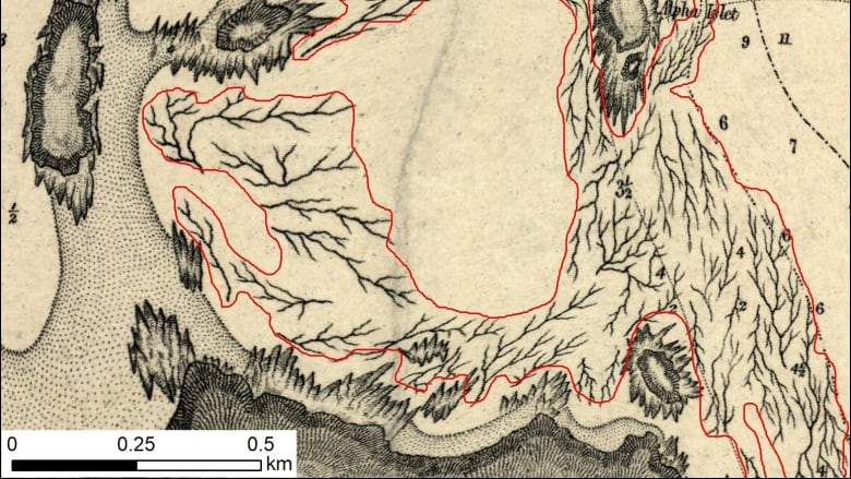 Century-old maps are helping track B.C.\'s kelp forests — and their ...
