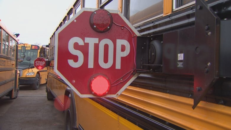 Cars fail to stop for school bus, caught on dash cam: police