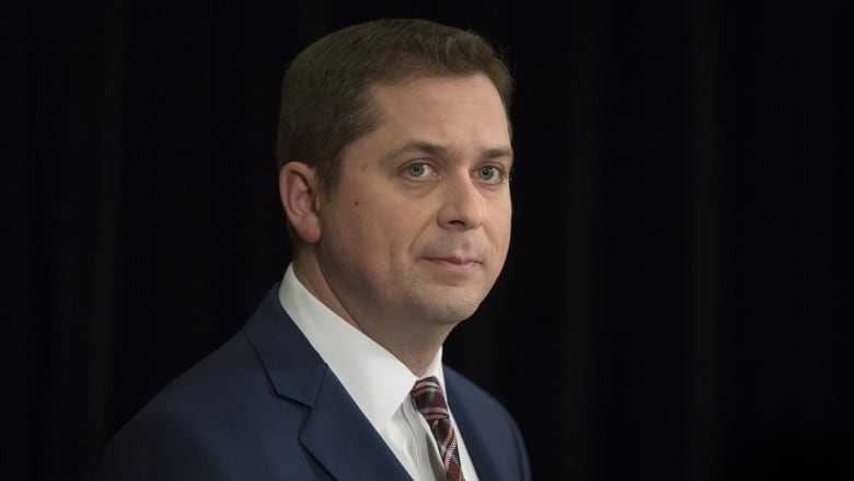 Scheer says he didn't hear question about Clinton 'pizzagate' lie during town hall