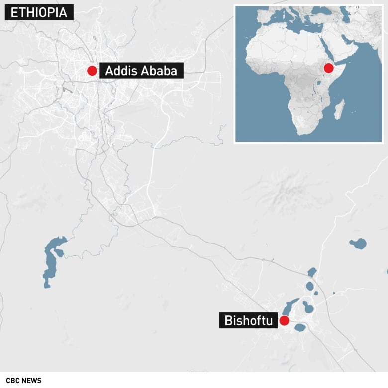 ethiopia-airlines-crash-2019.jpg