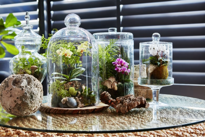 Steven Sabados Shows Us How To Create A Living Terrarium Tablescape