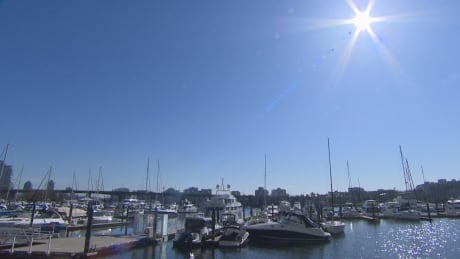 Metro Vancouver says hello to a bright, sunshiny week
