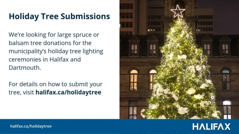 Trees for annual lighting ceremonies a tall order in Halifax, Dartmouth