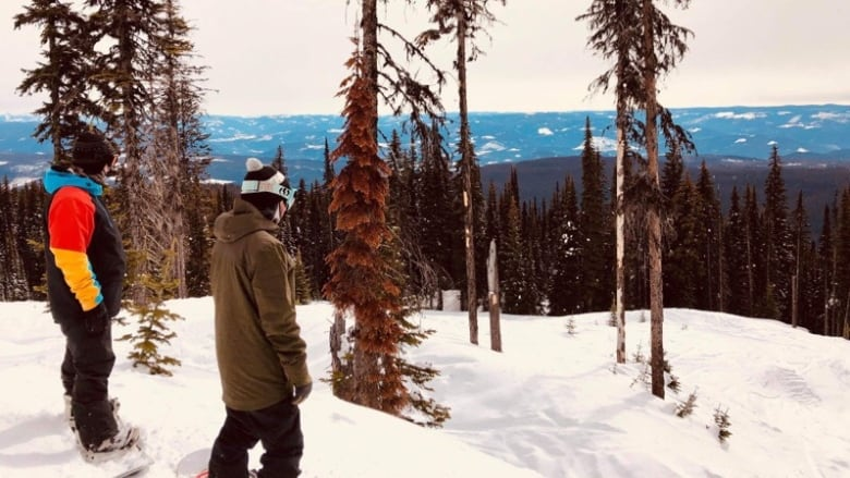 'There was a lot of blood. He was a very broken man': Snowboarder swept away by avalanche at B.C. ski resort
