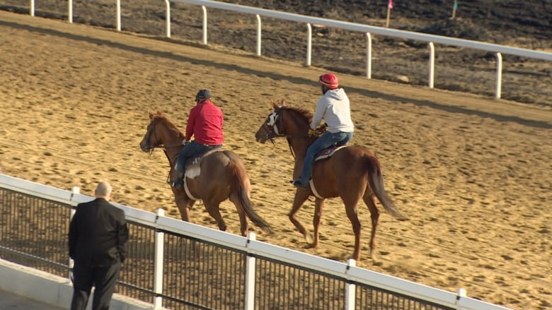 Century Downs Racetrack and Casino Opens to Public
