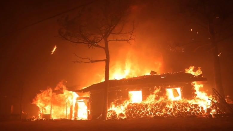 Thousands flee their homes as wildfires rip through South Korea
