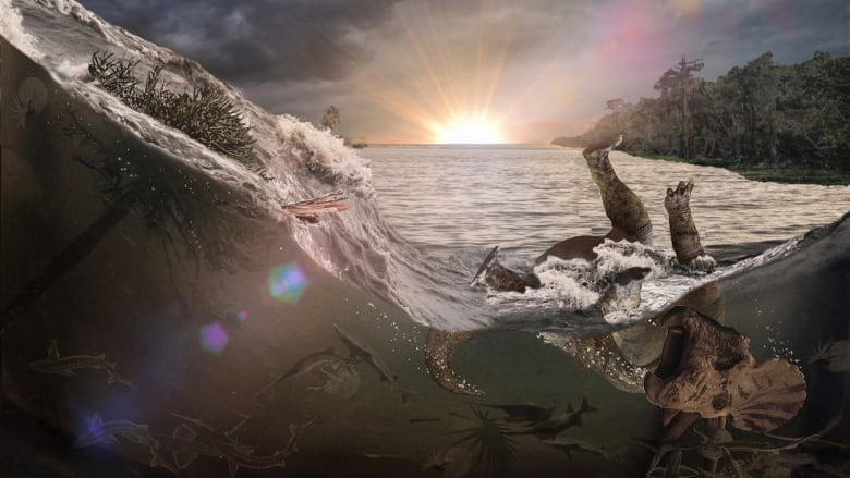 A Catastrophe Frozen In Time A New Fossil Site Shows How The Dinosaurs Died Cbc Radio