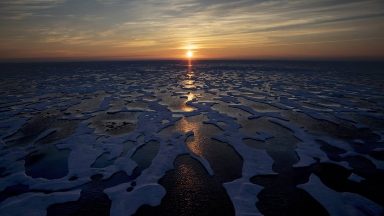 Future Arctic won't look like the Arctic we know now, says report