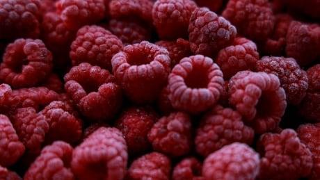 Raspberries B.C. Grown Abbotsford