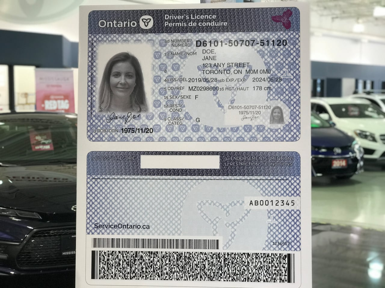 Ford government reveals updated driver's licence card to