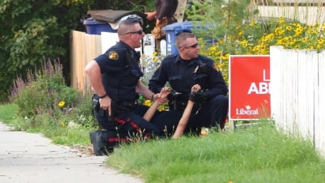Use of force by Saskatoon police drops 3.4 per cent