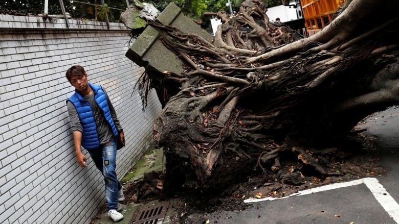 taiwan earthquake - photo #4