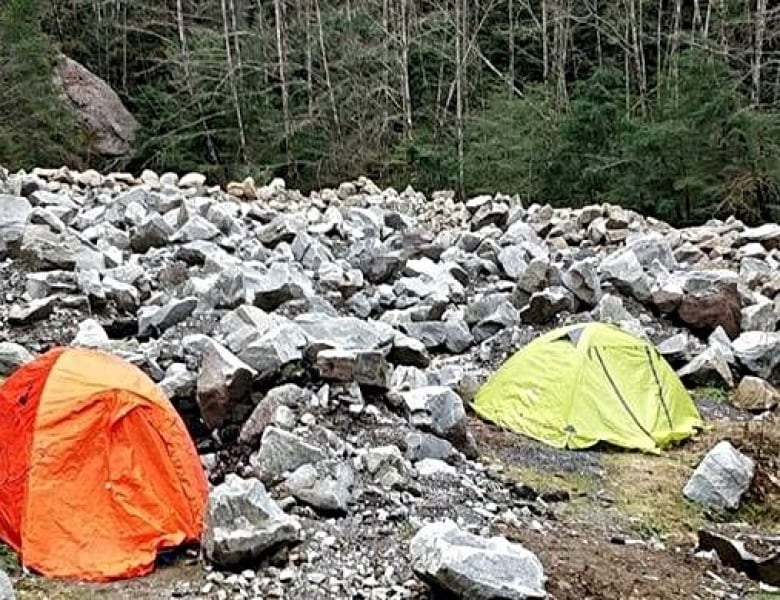 Squamish looks to crack down on free 'wild' camping   CBC News