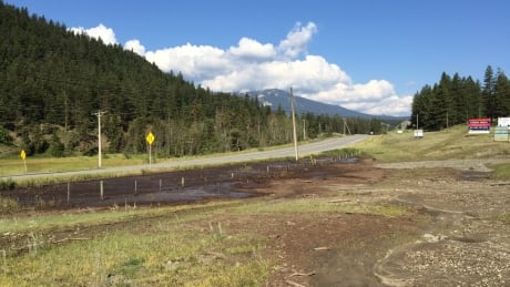 Wildfires prompt new B.C. protocols around flooding and mudslides