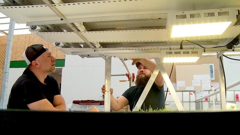 Canmore's Lettuce Lads design system to revolutionize hydroponic farming