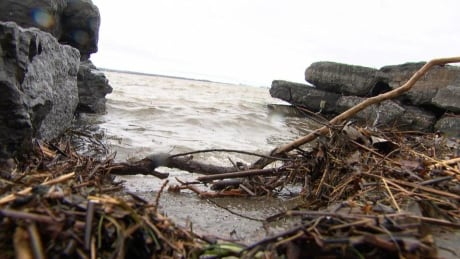 Dozens of flood victims seek help at Gatineau shelter